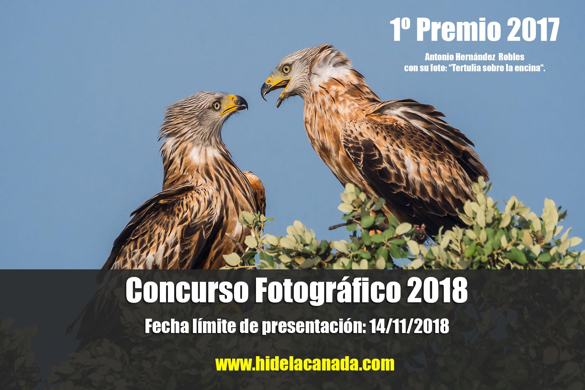IV Edición Del Concurso Fotográfico